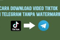 Cara Download Video Tiktok Di Telegram No Watermark