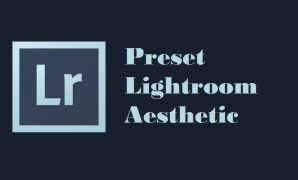 Preset Lightroom Aesthetic Gratis Tinggal Download